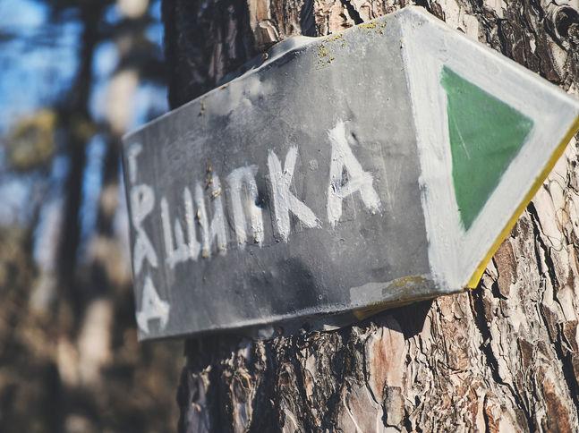 2PVA -  BULGARIA - 1230 -janv. 09 2020.j