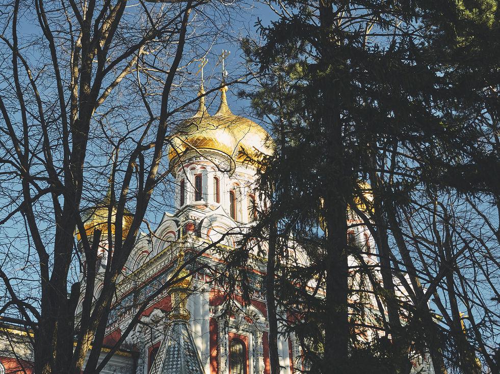 2PVA -  BULGARIA - 1196 -janv. 09 2020.j