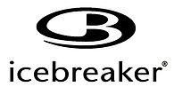 Logo Icebreaker - 2PVA