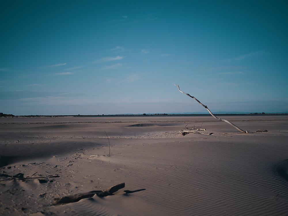 2PVA, camargue, beach