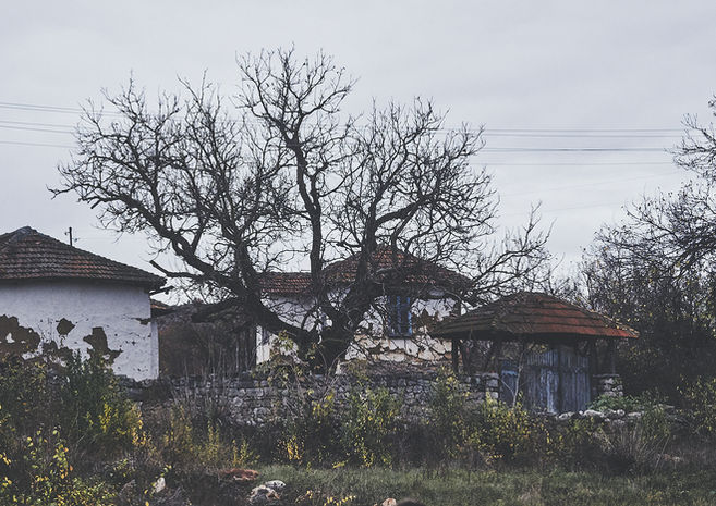 2PVA - Serbia- 0013 - nov. 22 2019.jpg