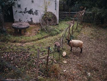 week1-2PVA_-_PORTUGAL_-_févr._11_2018_-_1177.jpg