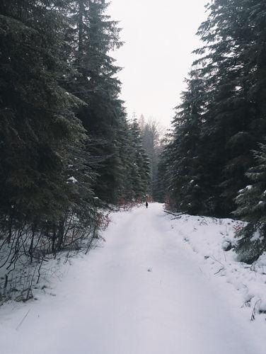 2PVA_-_SLOVENIA_-déc._10_2018_-_443.jpg