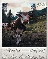 mock up galerie france part3.jpg