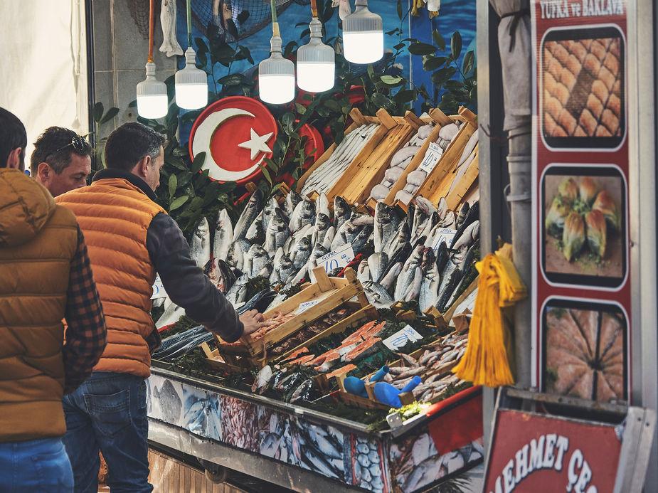 2PVA_-__TURKEY_-_303_-févr._02_2020.jpg