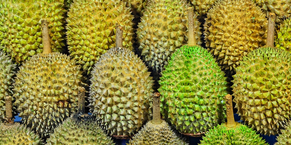 2019 Durian Party