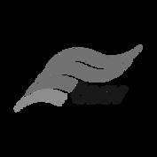 oesterreischischer-behindertensportverba