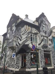 Reykjavik city Walking tour.JPG