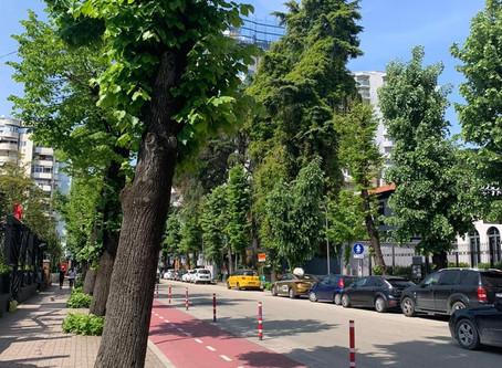 Tirana Back To Green