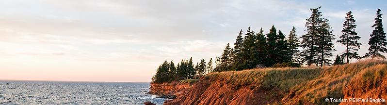 Banner-Shoreline.png