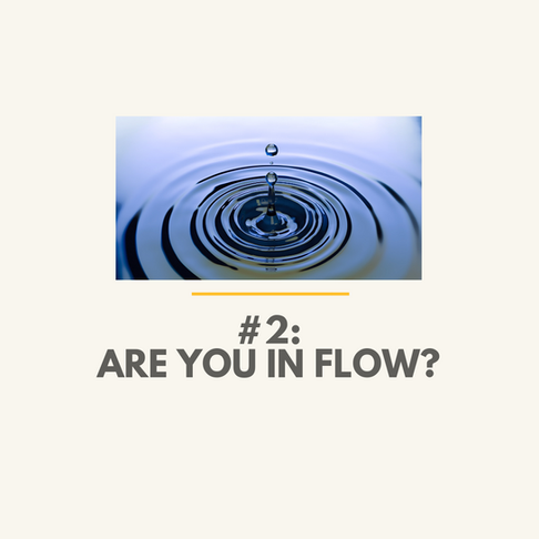 Are You in Flow?