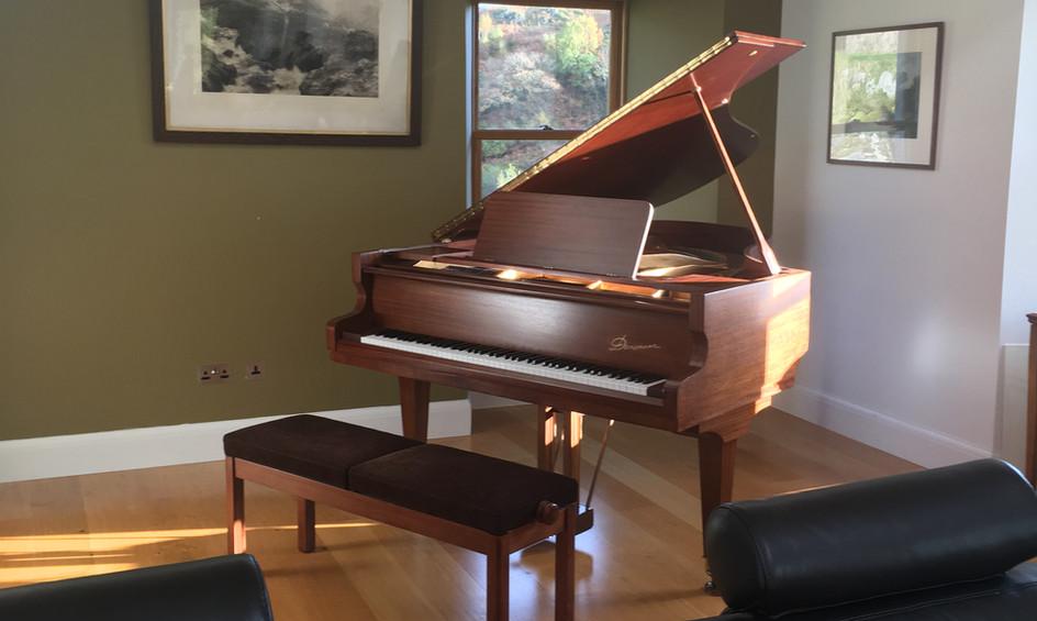 Danemann Grand piano.JPG