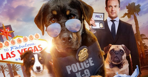 Will Not Rest_Show Dogs Movie_Grooming Alert