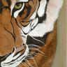 Cassie's Tiger.jpg