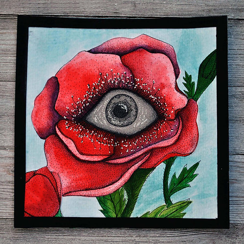 Through the Eyes of Poppies