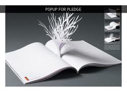 Popup - for Pledge