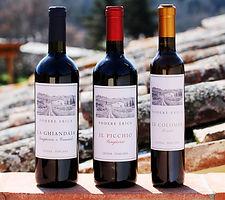 WinesPhotoatPodere.jpg
