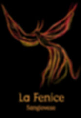 LaFenice3.jpg