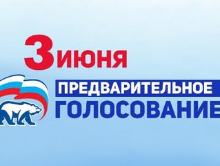 Энгельсский местный политический совет принял решение о проведение предварительного голосования