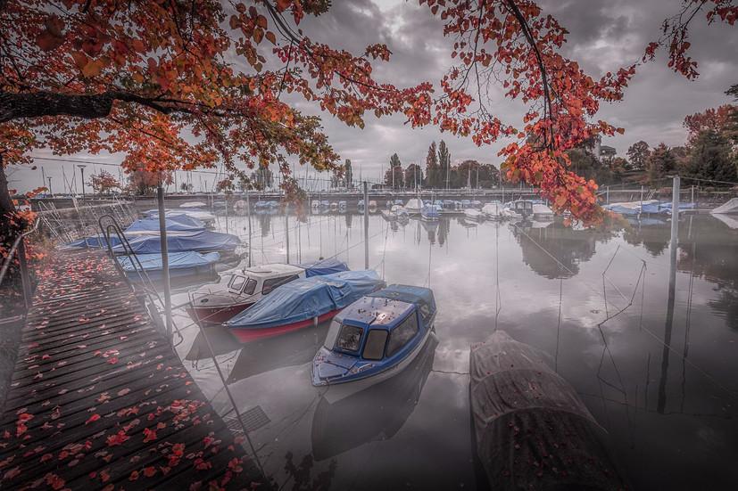 A day of Autumn (Switzerland)
