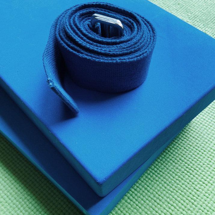 Foundations of Hatha Yoga