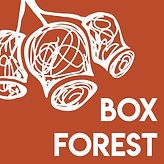 BOX FOREST LOGO (2).jpg