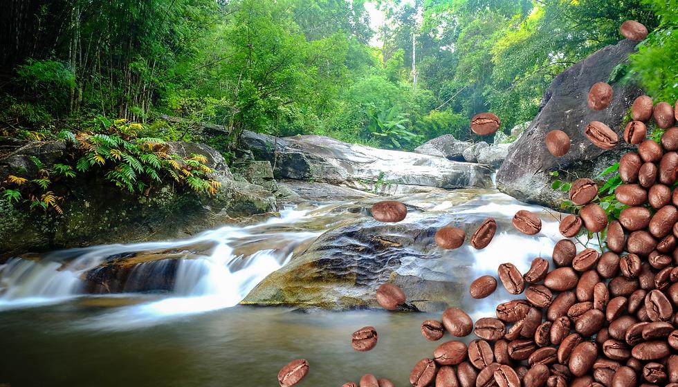 SustainaBlog Cascading water running thr