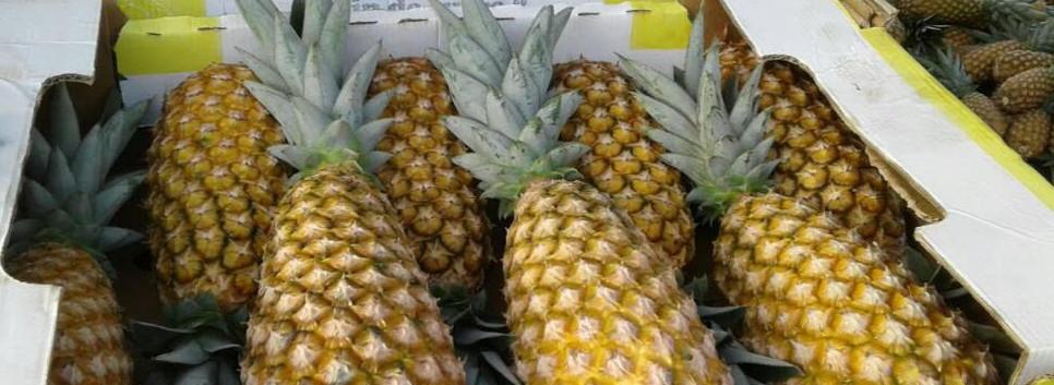 pineapple-in-box_edited.jpg
