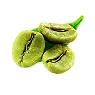 cafe-vert-1.jpg