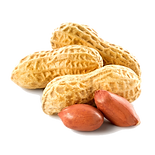 In-shell peanuts from Senegal, West Africa