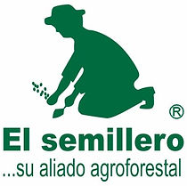 semillero.jpg