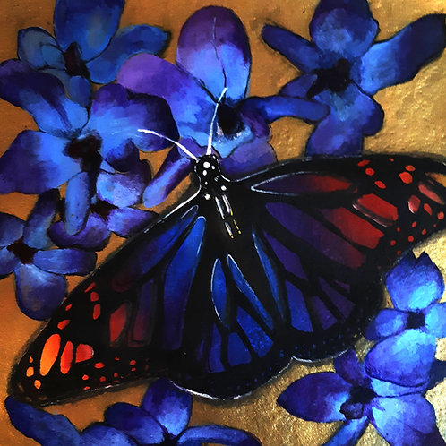 Rainbow butterfly and Blue Orchids