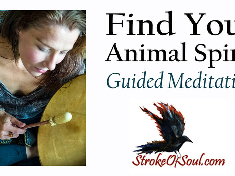 How To Find Your Animal Spirit