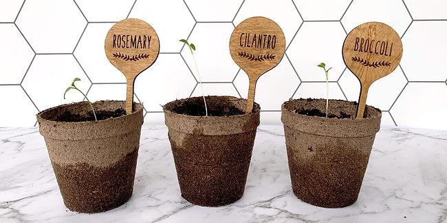plantstake-herbs-9.jpg