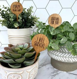 plantstake-multi-4.jpg