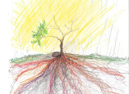 Recent Tree Meds drawings #treemeds