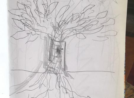 TREE MEDS 11th May