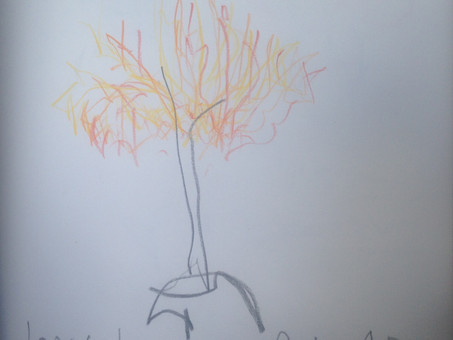 Tree Meds - Draw Together 1st May