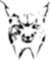 Lynx Icon.png