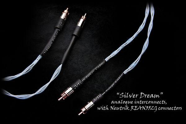 Silver_Dream-REAN-1200x800-text.jpg