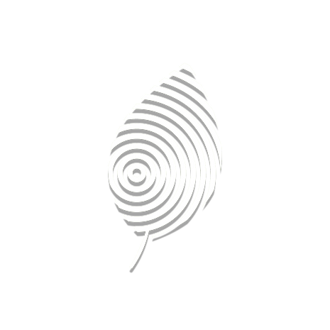 Sprout Logo.png