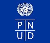 613-logo_pnud.jpg