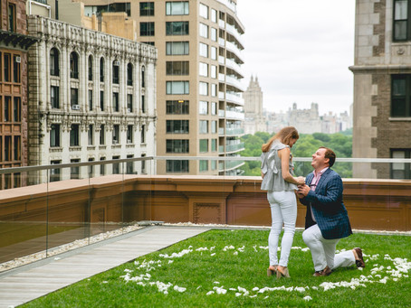 What does a Proposal Planner do?
