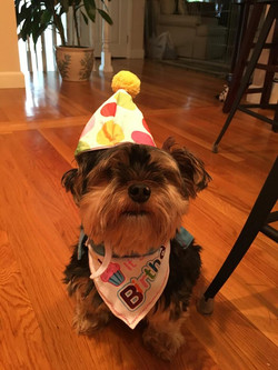 Tito's 11th Birthday