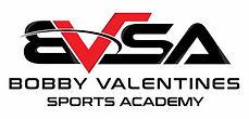 BVSA Logo.jpg