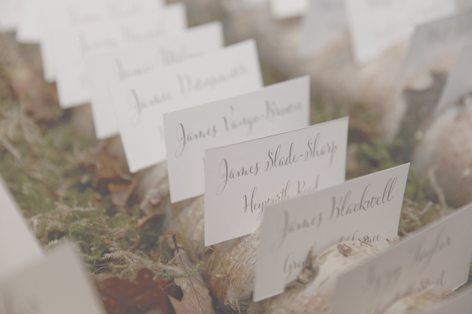 woodland theme wedding escort cards