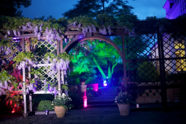 50th birthday party outside lighting