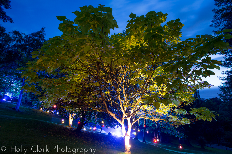 21st birthday party tree tea lights