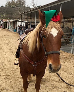 Happy Holidays from Horse Play Rentals a