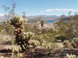 Lake Mead - Nevada